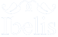 IBELIS CORPORATION
